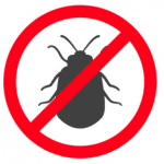 Groves TX bed bugs exterminator Silsbee Pinewood Estates